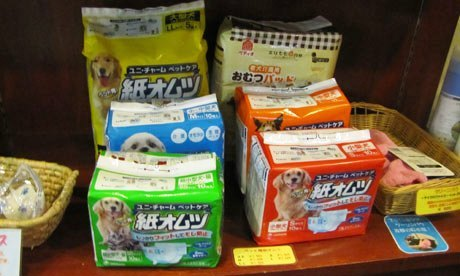 Dog-nappies-being-sold-in-008.jpg